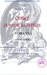 Junior champion