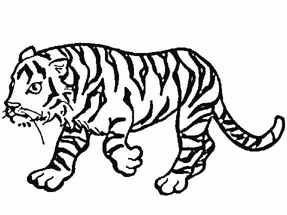 How to Draw a Cartoon Zebra with Easy Steps Lesson for