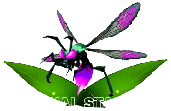 STAGE FINAL