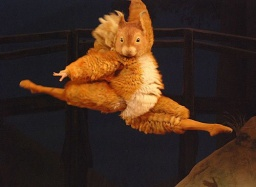 Tales of Beatrix Potter -Steven McRae.jpg