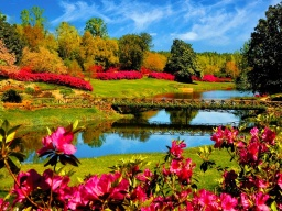 Best nature flower park.jpg