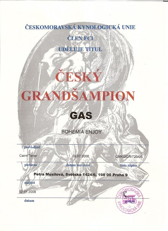 Gas - grandšampion.jpg